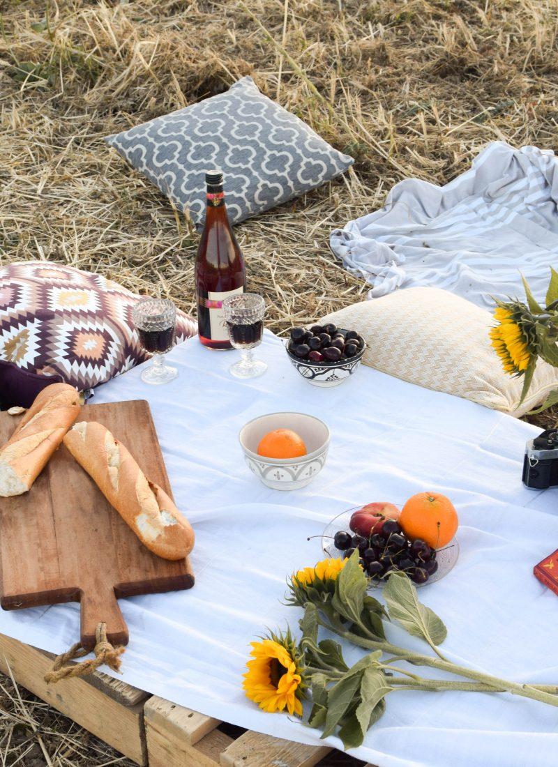 A summer evening picnic